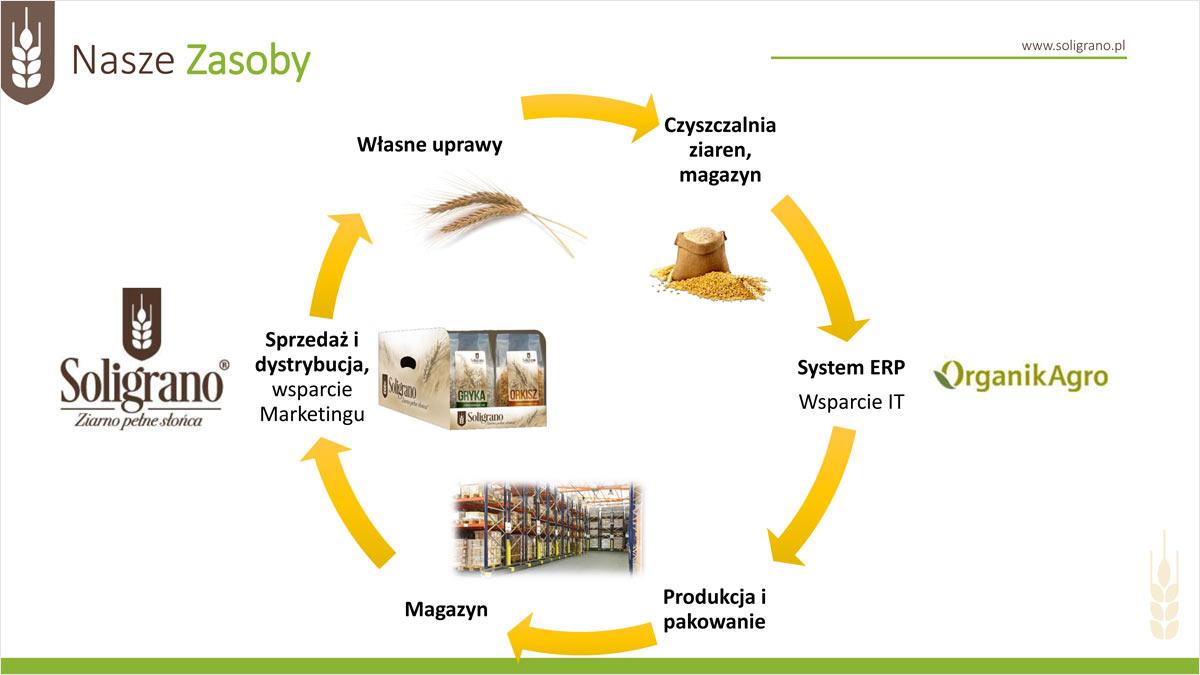 Slajd PowerPoint przed graficznym opracowaniem